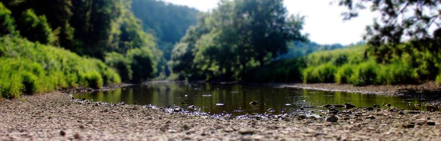 Donaucversinkung, Donauversickerung